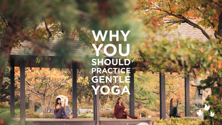Why You Should Practice Gentle Yoga